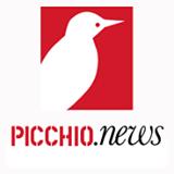 Picchio-News